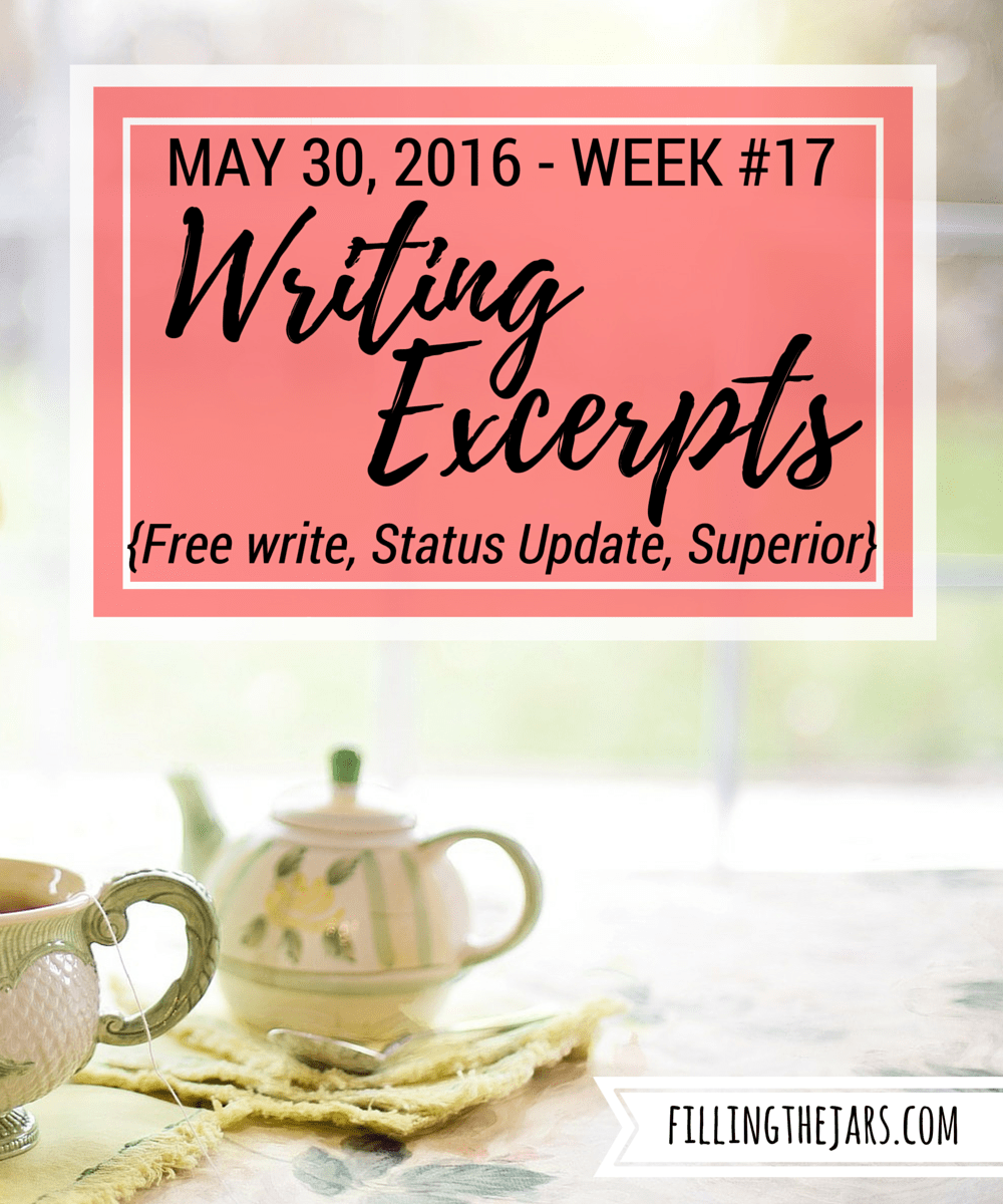 Writing Excerpts - May 30, 2016 | www.fillingthejars.com | {Free write, Status Update, Superior} Click through to read Week #17 of my writing excerpts, putting my words out there for anyone to read.