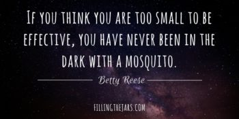 """If you think you are too small to be effective, you have never been in the dark with a mosquito."" – Betty Reese 