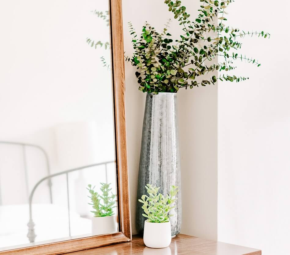plants in vases next to mirror on dresser in clutter-free white bedroom