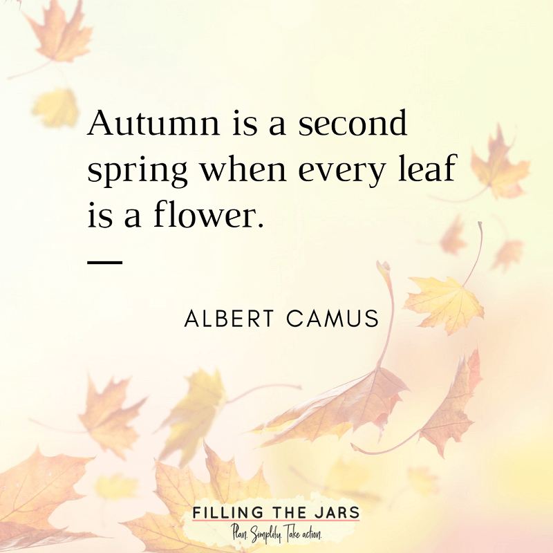 albert camus autumn leaf quote on faded background of falling leaves