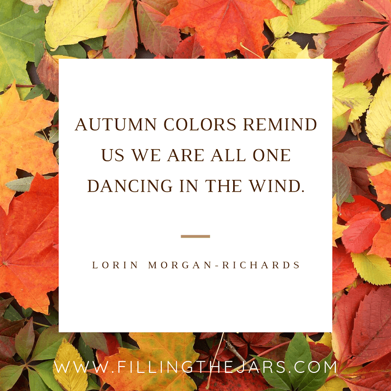 lorin morgan richards autumn colors quote on white background over colorful leaves