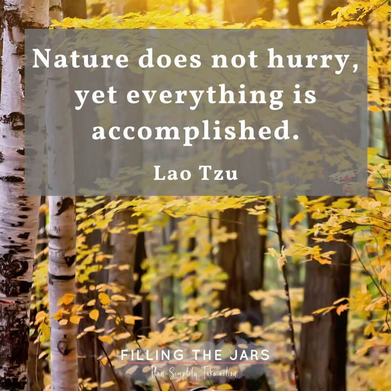 autumn forest with text overlay nature does not hurry by lao tzu