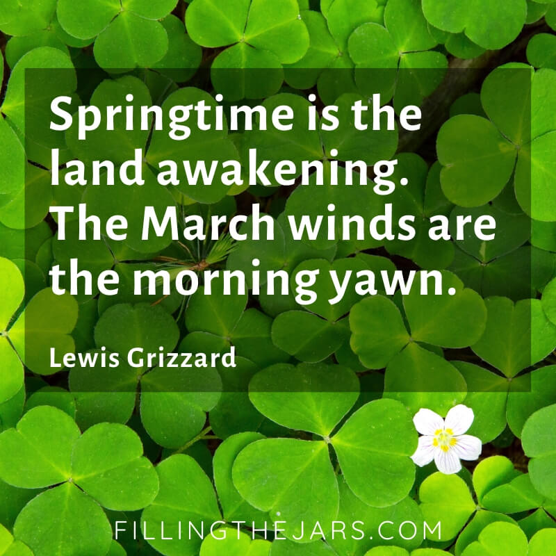 lewis grizzard march winds quote on bright green clover leaf background with single white blossom