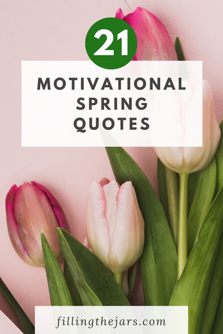 closed pink tulips on pink background with text overlay motivational spring quotes