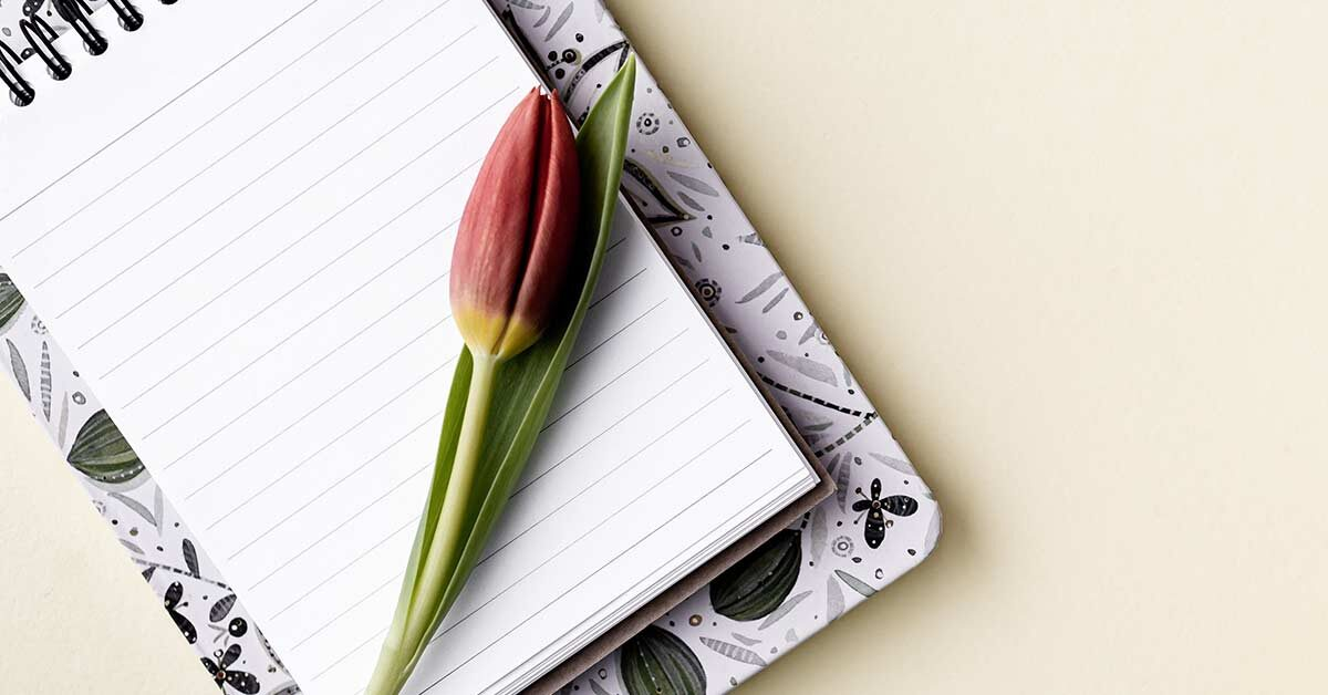 closed tulip lying on open notebook and journal on cream-color background