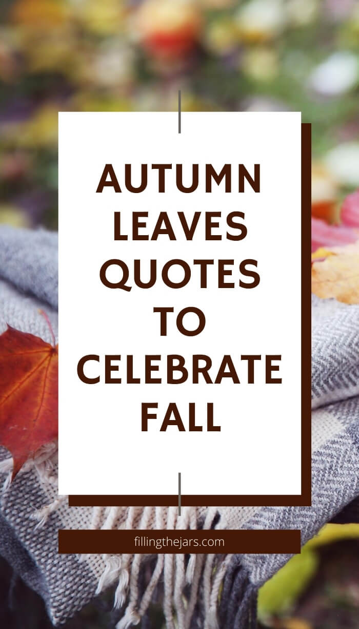 Autumn Leaves Quotes 25 Gorgeous Fall Seasonal Quotes Filling The Jars