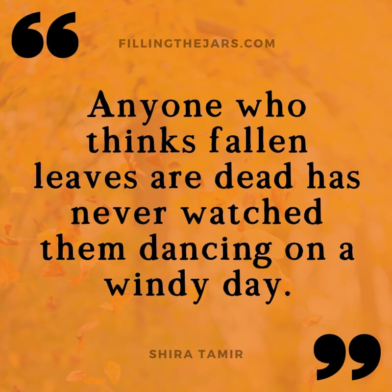 Shira Tamir leaves dancing in the wind quote on orange background over image of airborne autumn leaves