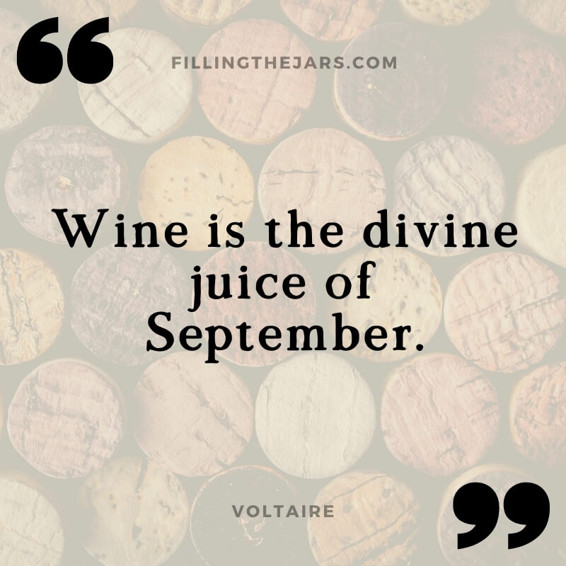 Voltaire wine quote on transparent white background over image of stacked wine corks