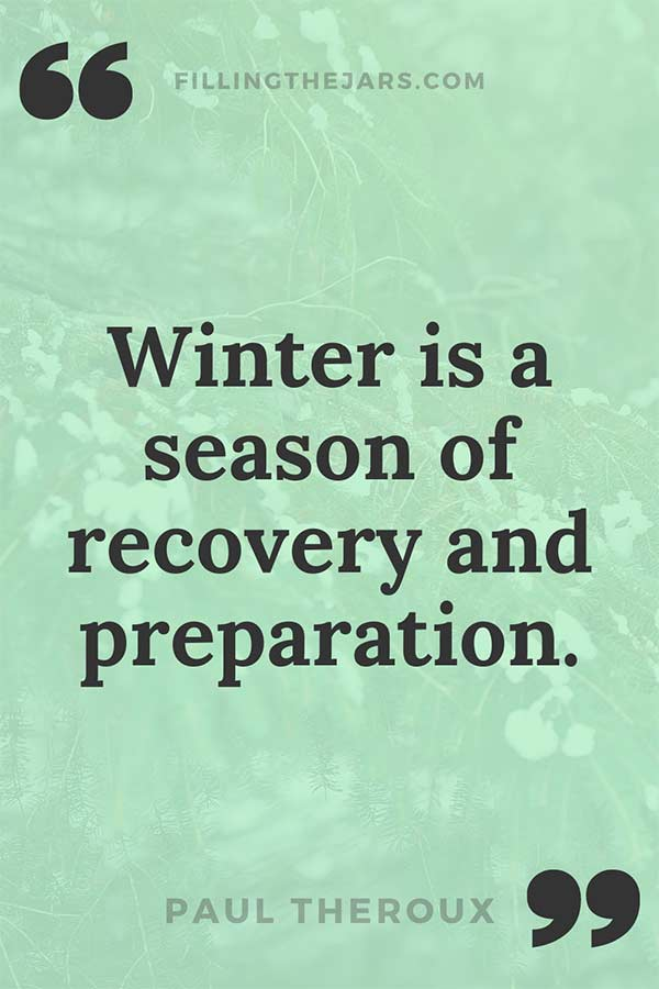 Paul Theroux season of recover quote on pale green winter pine branch background