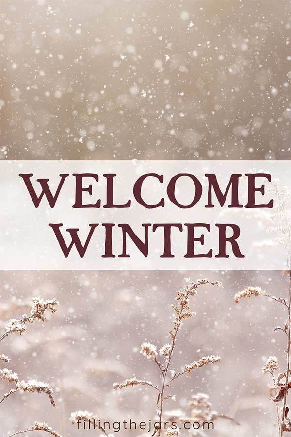 welcome winter text on white stripe across image of snow falling on meadow weeds