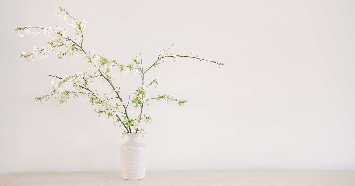 blooming tree branches in white vase on clutter-free wood table