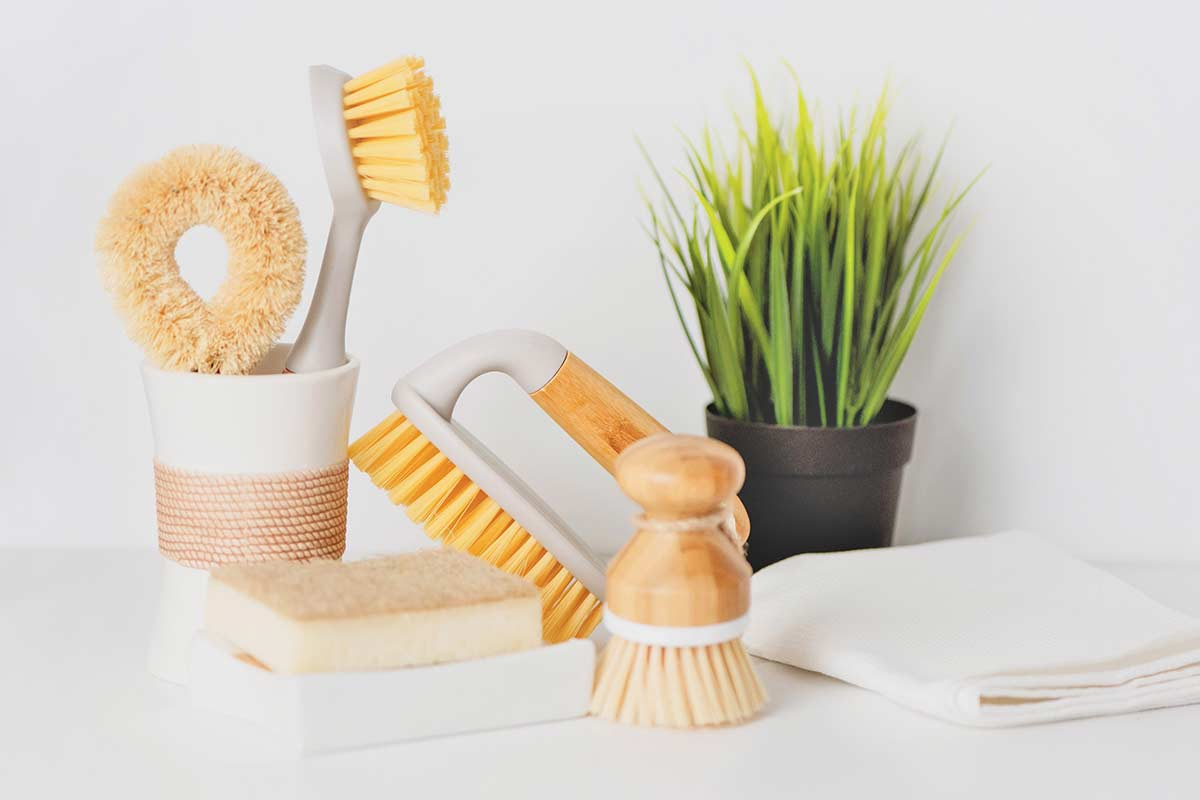 Cleaning sponges and brushes with natural accents and small green plant on white counter.