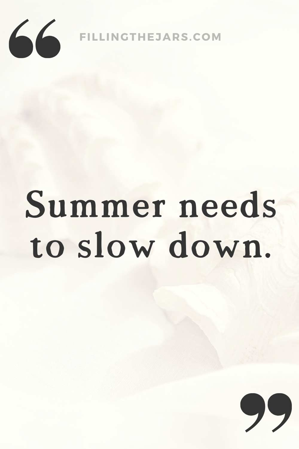 Summer needs to slow down text quote on whitewashed summer seashell background.