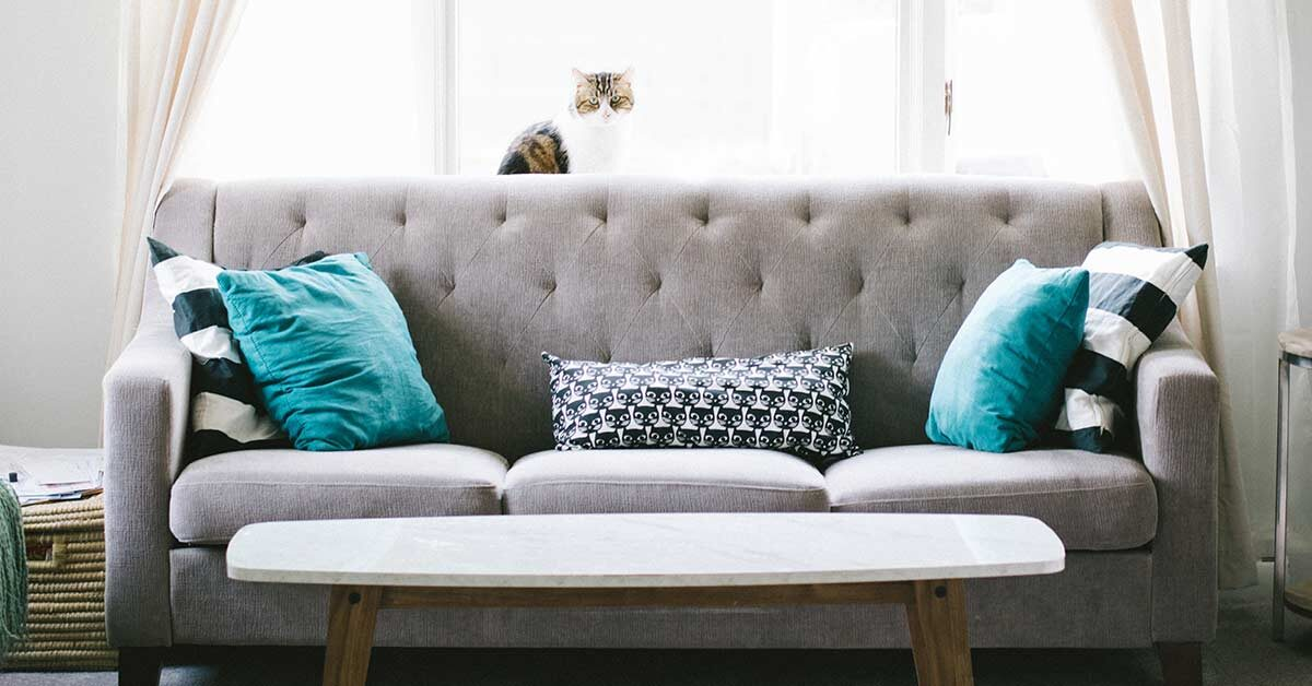 Grey couch with turquoise pillows in a clutter-free living room.