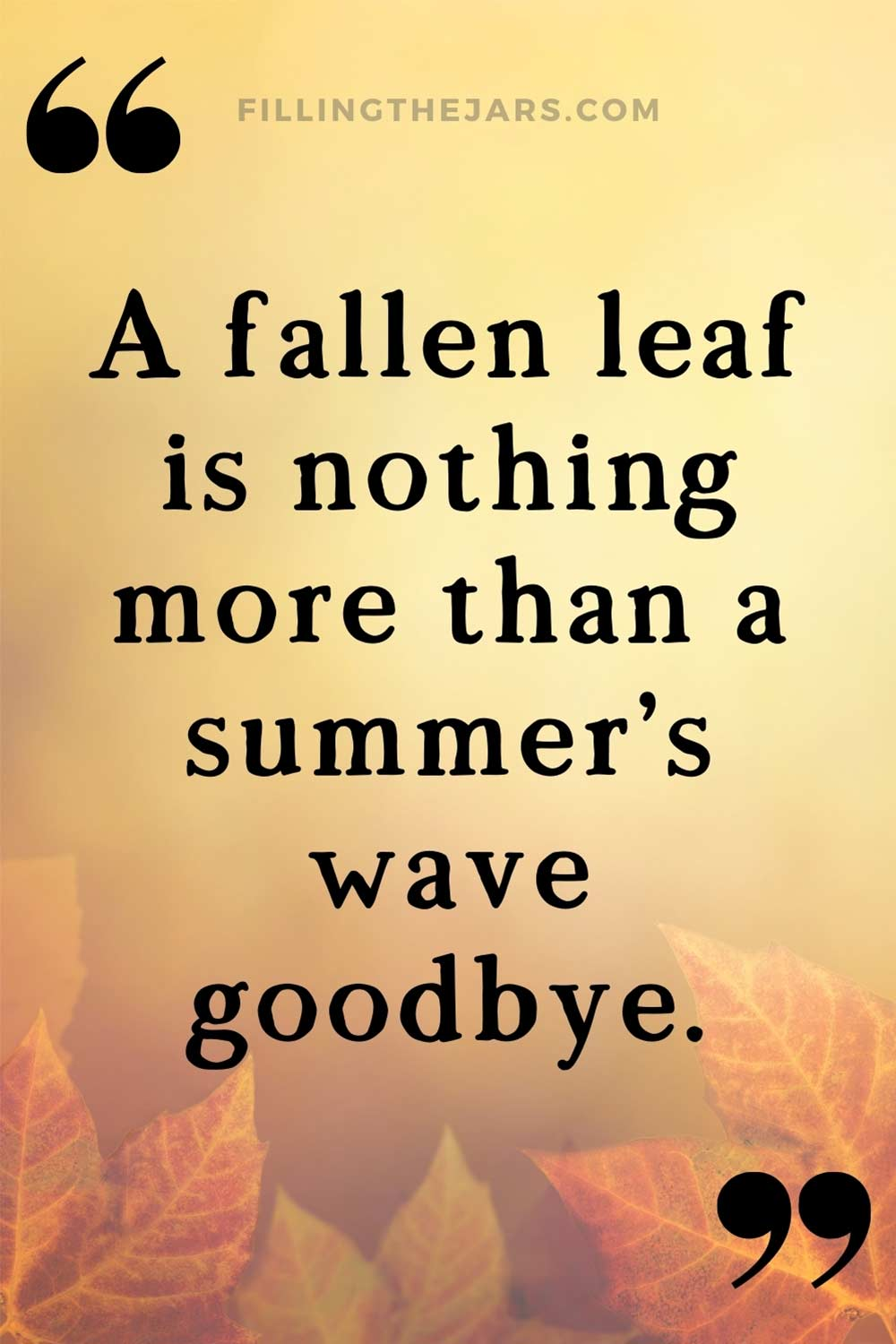 A fallen leaf is a summer's wave goodbye quote in black text on faded image of autumn leaves.