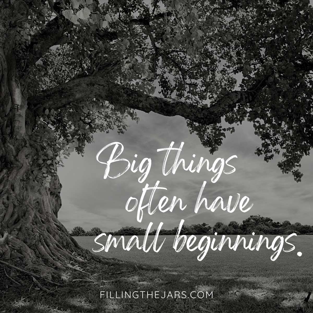 Big things often have small beginnings quote in white script text on black and white background of giant tree in field.